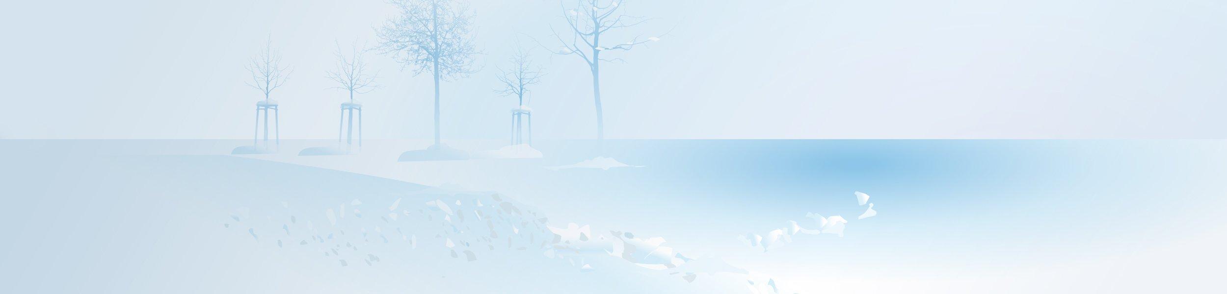 Schnee- und Eisbeseitigung, Winterdienst in NRW