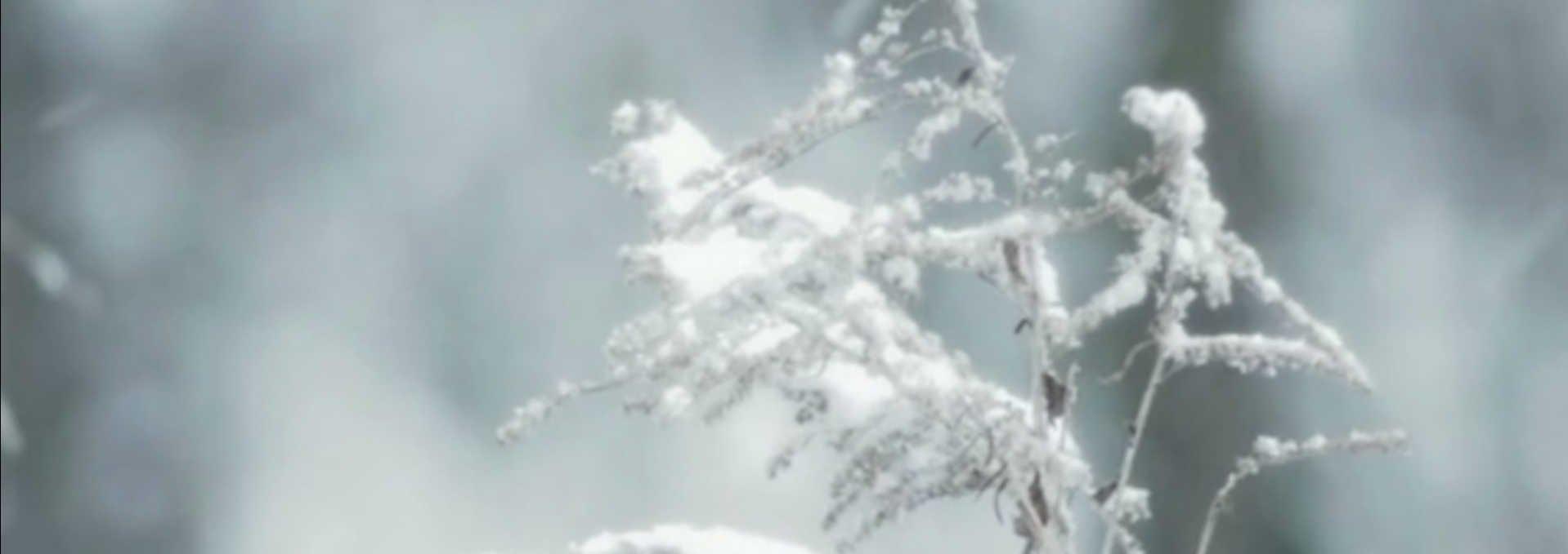 Video Fallback Winterdienst